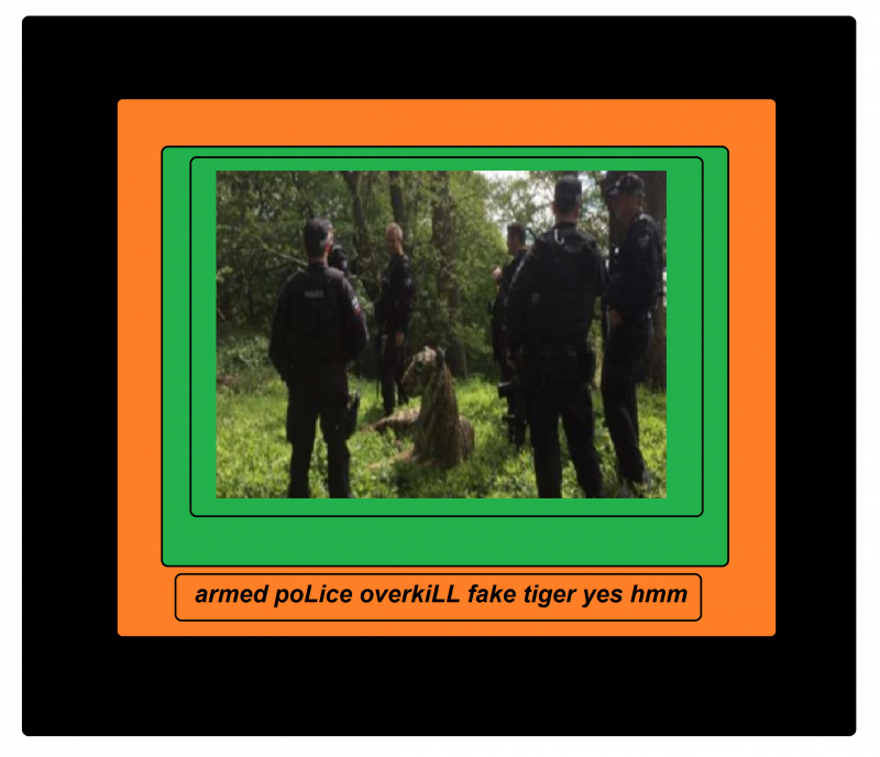 armed poLice overkiLL fake tiger yes hmm 786541