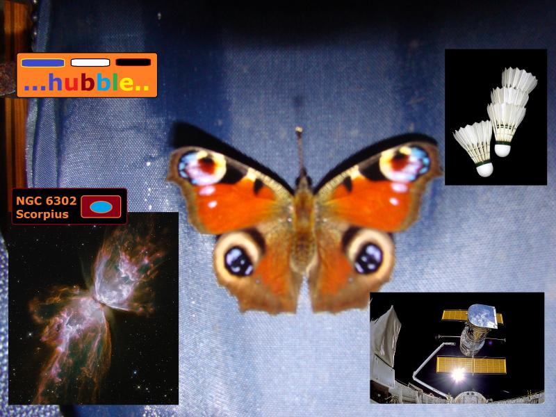 butterfly shuttle badminton hubble