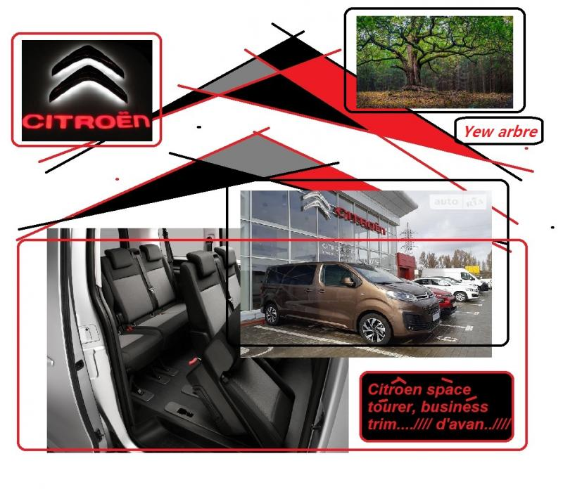 citroen space tourer business trim d avan yew arbre