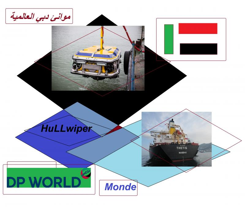 hullwiper dp world