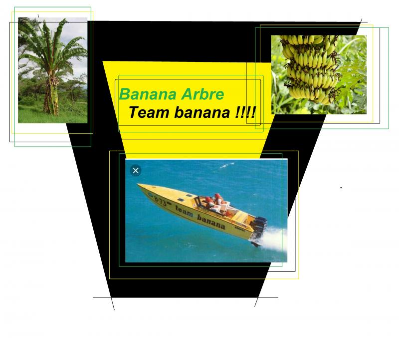 team banana arbre