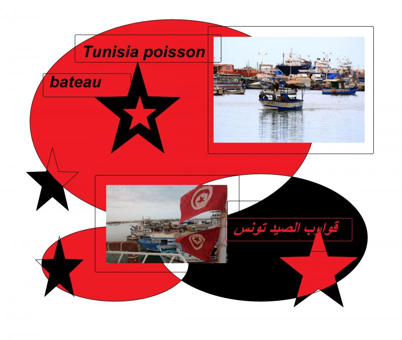 tunisia fishing boats 3